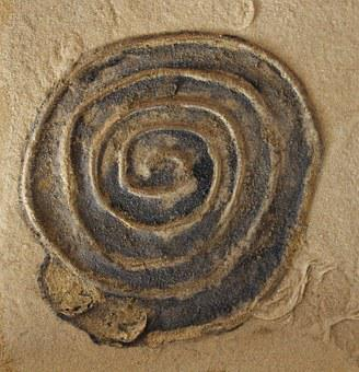 Spiral, Art, Snail, Sand Picture, Abstract, Eddy