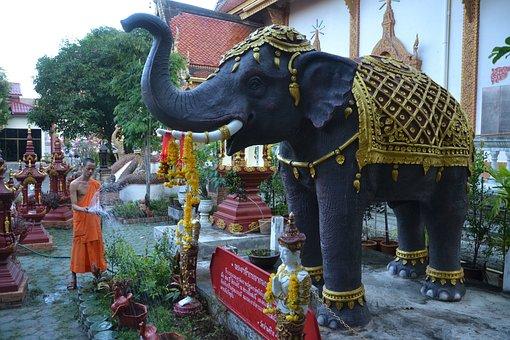 Elephant, Monk, Thailand, Temple, Watering, Garden