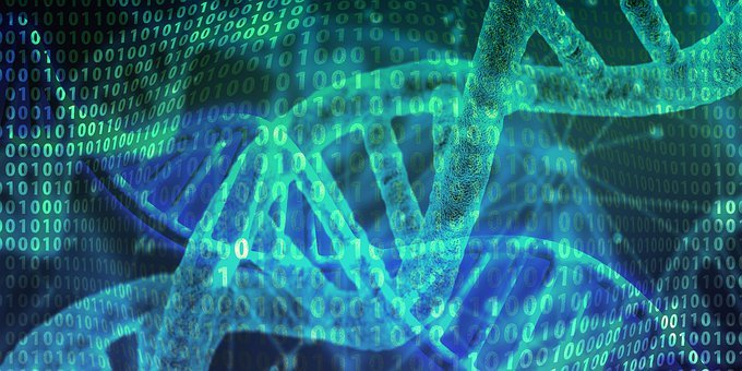 Dna, Genetic Material, Helix, Proteins