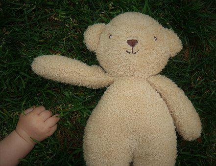 Baby's Hand, Teddy Bear, Rush, Meadow, Child, Baby