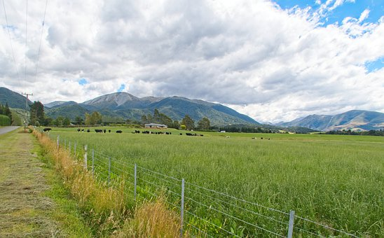 Nz, Nature, New Zealand, South Island, Canterbury