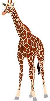 Giraffe, Mammal, Animal, Herbivore, Wildlife, Safari