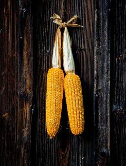 Corn, Grain, Cereals, Agriculture, Harvest, Food