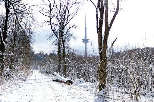 Winter Way, Snow, Winter, Wintry, Landscape, Trees