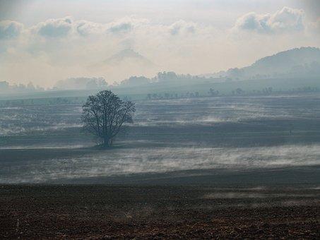 Landscape, Morning, Fog, Vapoury, Haze, Bezděz, Castle