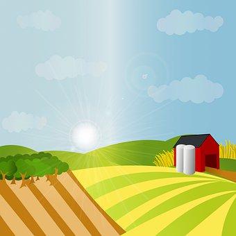 Farm Background, Farm, Barn, Green, Produce