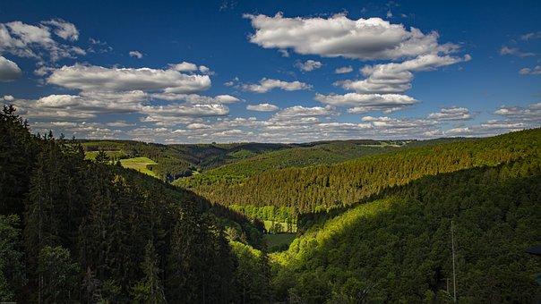 Sauerland, Forest, Landscape, Nature
