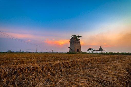 Landspace, Sky, Field, Landscape, Clouds, Tree, Sunset