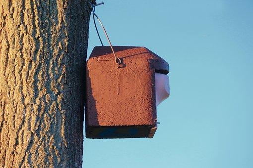 Aviary, Nesting Box, Nature Conservation
