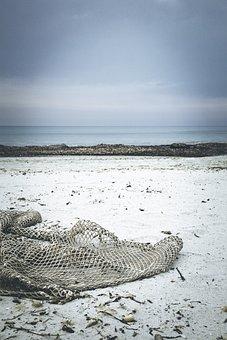 Beach, Drift Wood, Network, Fishing Net, Flotsam, Sand