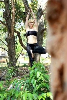 Tree Pose, Yoga, Ashtanga, India, Fitness, Asana, Pose