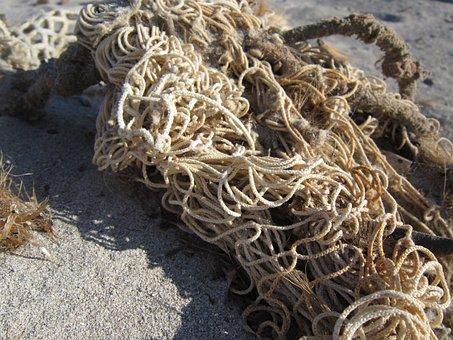 Web, Fishing Net, Beach, Sand, Flotsam, Close Up