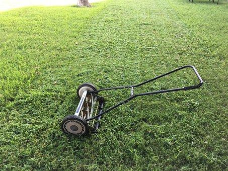 Lawn, Lawnmower, Green, Grass, Mower, Garden, Mowing