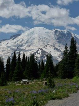 Rainier, Mountain, Washington, Landscape