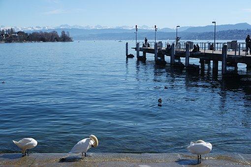 Zurich, Lake Zurich, Bürkliplatz, Hithe, Water, Lake