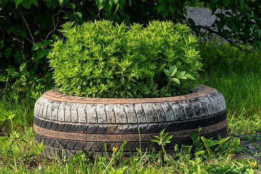 Bus, Old, Tires, Car, Flower Garden
