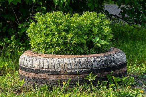 Bus, Old, Tires, Car, Flower Garden, Profile, Rubber
