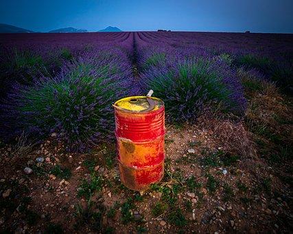 Lavender, Field, Fields, Fragrance, Purple, Provence