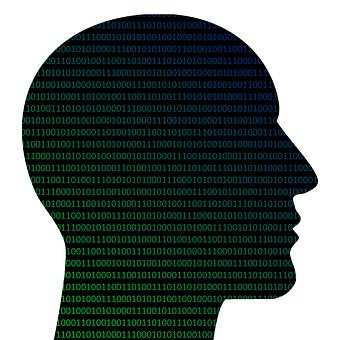 Head, Binary, Coding, Programming, Program, Technology