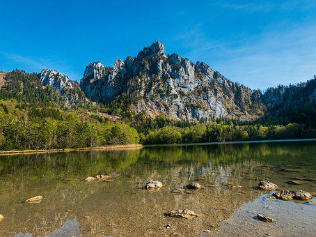 Lake, Forest, Mountain, Nature, Water
