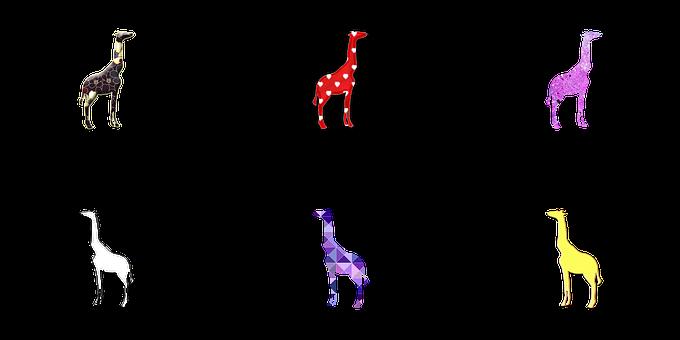 Giraffe, Giraffe Illustration, Giraffe Drawing