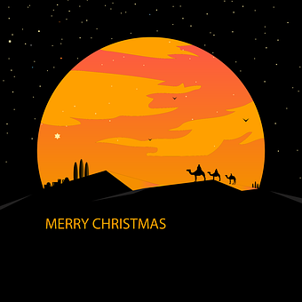 Merrychristmas, Christmas, Natal, Christmastree, Xmas