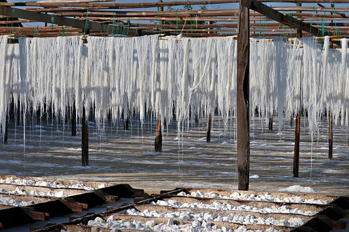Drying Of Rice Noodles, Burma, Myanmar, Suspended