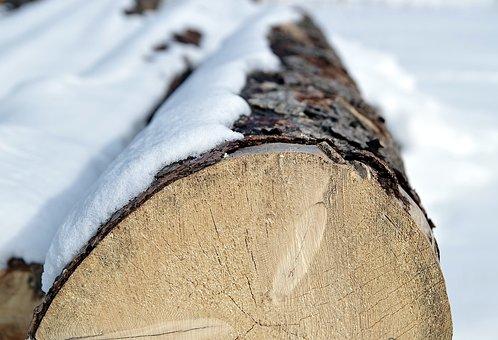 Wood, Tree, Trunk, Cut, Sawmill, Natural, Texture, Snow