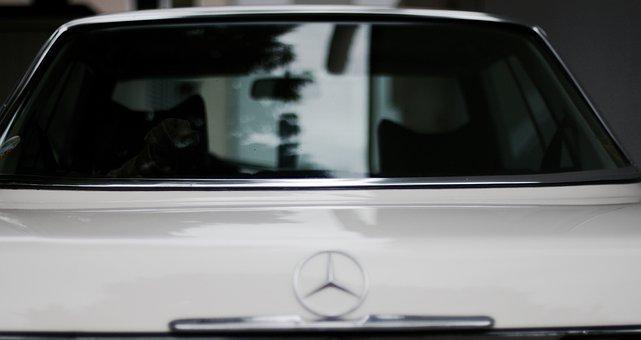 Mercedes Benz, Auto, Vehicle, Pkw, Classic, Oldtimer