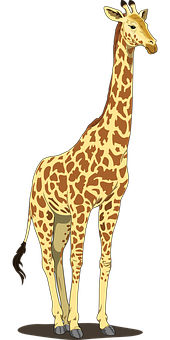 Giraffe, Tall, Spots, Long, Neck, Tail, Wildlife