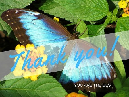 Thank You, Gratitude, You Are The Best, Thank You Note