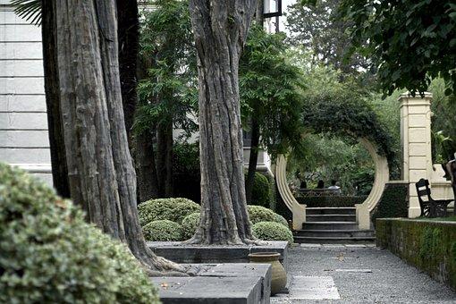Garden, Park, Public Park, Green, Summer, Spring