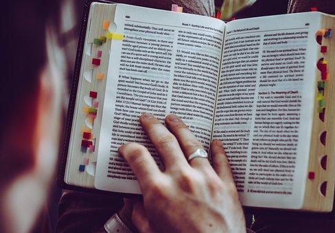 Read, Book, Bookmark, Holy Scripture, Faith, Literature