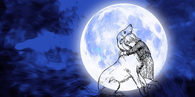 Dog, Doggies, Pet, Moon, Night, Sky, Full Moon