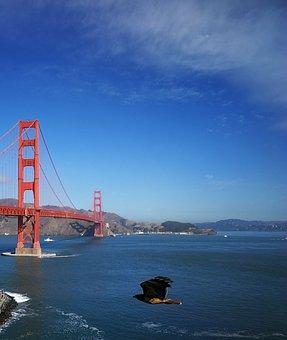 Golden Gate, Bridge, San Francisco, United States
