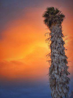 Sunset, Evening, B, Sun, Summer, Scenic, California