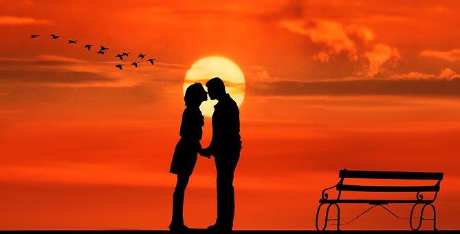 Sunset, Pair, Lovers, Kiss, Bank, Bench, Birds