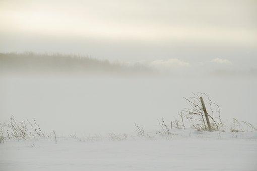 Burst On Morning Winters, Burst, Winters, Minimalism