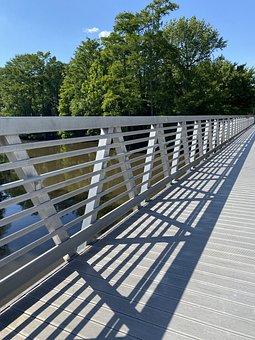Walk, Nature, Hiking, Tree, Woodland, Bridge, Forest