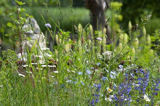 Flower Meadow, Steinmanderl, Cairn