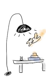 Lamp, Desk, Books, Cat, Flying Cat