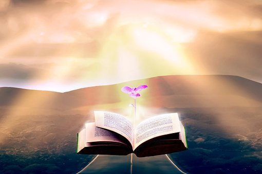 Books, Color, Light, Sunlight, Germ, Colorful, Paper