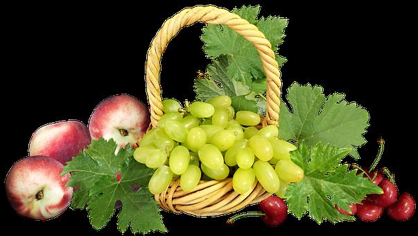 Fruit, Basket, Grapes, Peaches, Cherries, Harvest