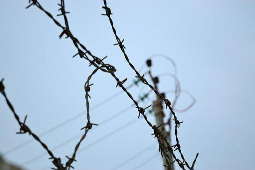 Barbed, Wire, Security, Fence, Metal, Sharp, Protection