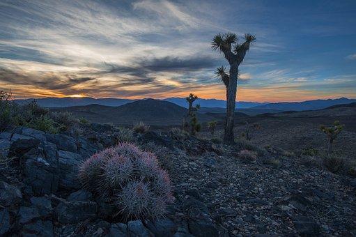 Desert, Death Valley, California, Landscape, Nature