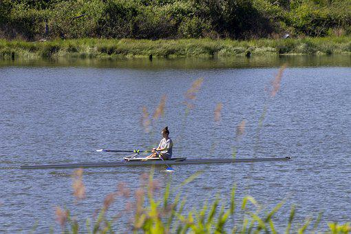 Crew, Shell, Scull, River, Water, Sport, Practice