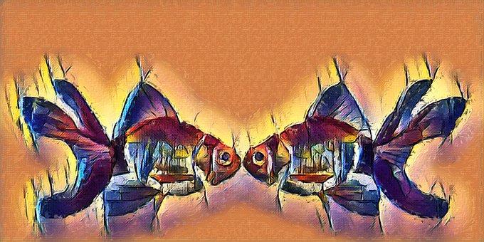 Goldfish, Fish, Kissing Fish, Fin, Red, Nature