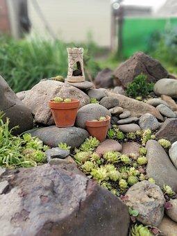 Rock Garden, Alpine Slide, Young, Garden, Stone Garden