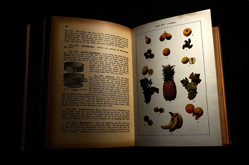 Antiquariat, Antiquarian Cookbook, Antique Cookbook