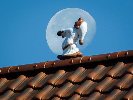 Moon, Sleep, Roof, Sleepwalkers, Fig, Tile, Brick